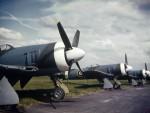 Des Tempest Mk II fraîchement sortis d'usine en 1945. (Photo IWM)